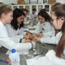 Extração do DNA humano e de frutas