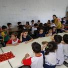 Tarde da fruta no palito na educação infantil!