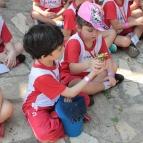 Turmas do Infantil 5 visitaram Sítio Geranium