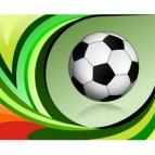 VII Copa La Salle Palotina Esportes de Futebol Suíço