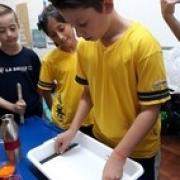 Pequenos e Jovens Cientistas
