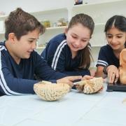 Expressão Científica e Bem Estar Social - Mostra Científica Cultural