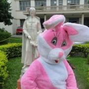 A Dona Coelha passou no La Salle Esteio!
