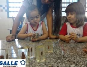 Crianças do Maternal Visitam Laboratório de Ciências